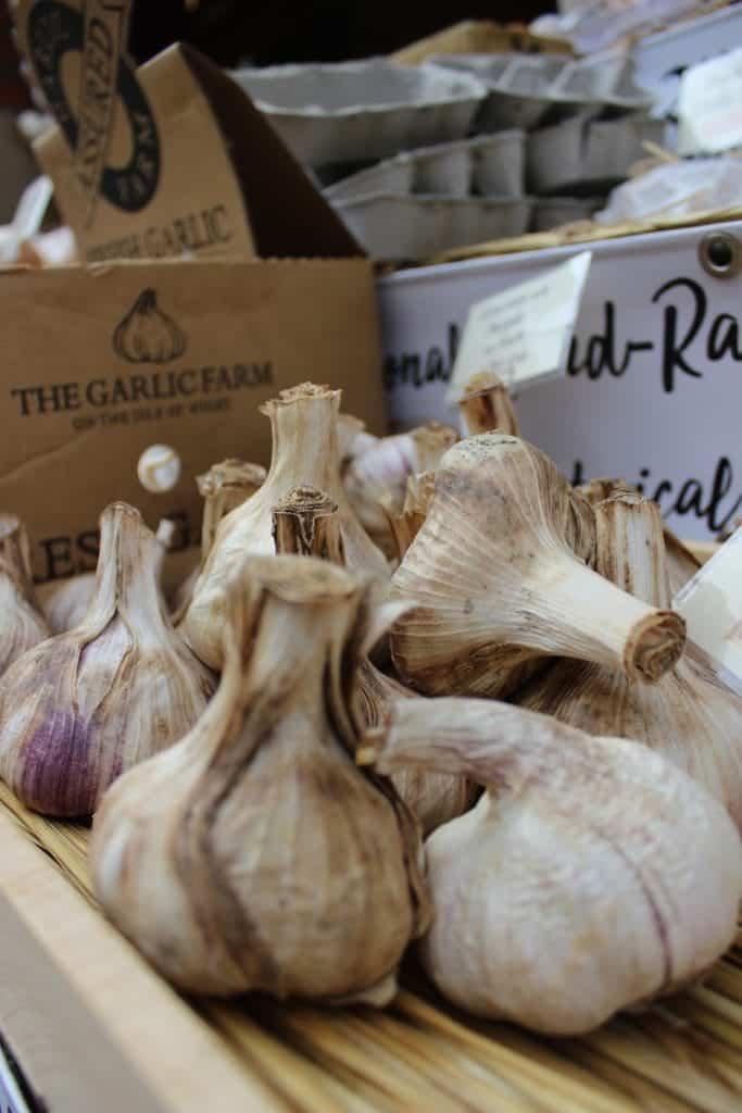 garlic bulbs for garlic press