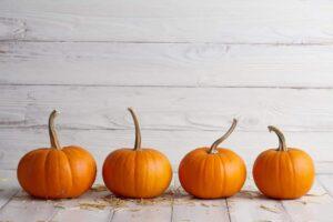 best-pumpkins-for-seeds