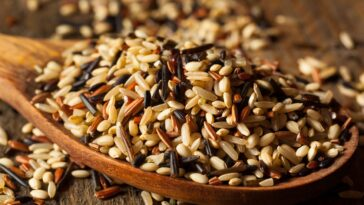 The MN State Fair Wild Rice Burger Recipe