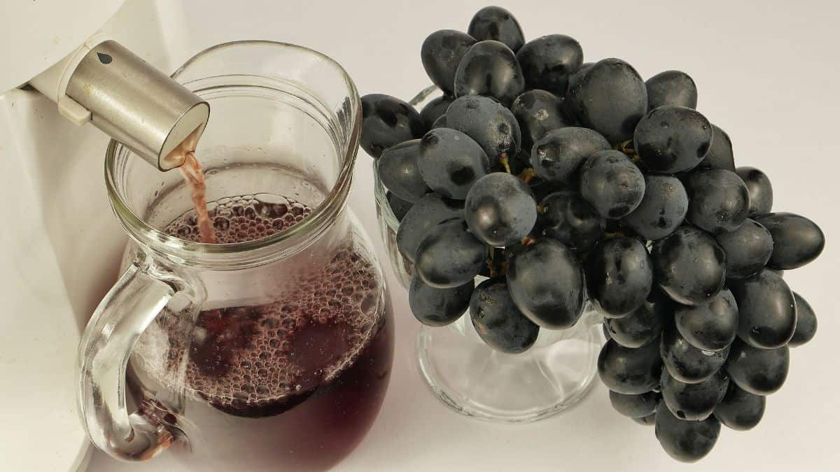 Grape Extract from Juicer