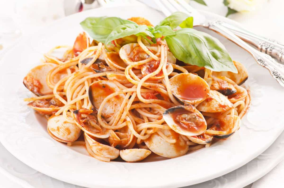 Italian style pasta clam in red sauce