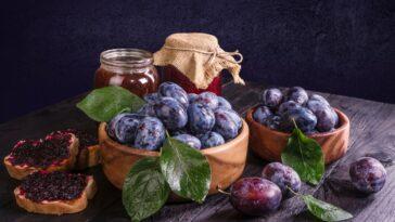 Recipes Using Fresh Plums