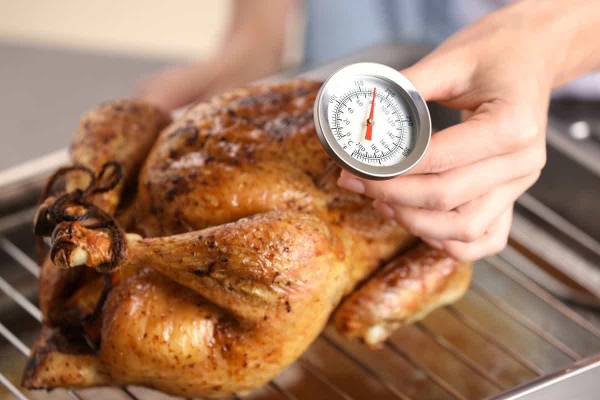 checking turkeys cooking temp